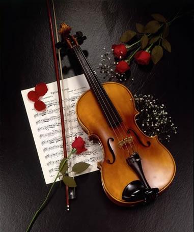 双音与和弦   小提琴可以同时演奏两个音甚至是3个音,也可以分奏图片